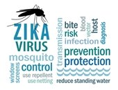 Mosquito prevention image